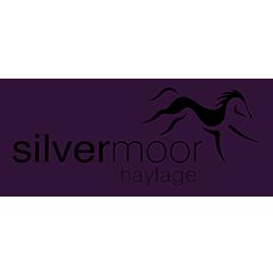 Silvermoor